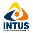 Icon INTUS